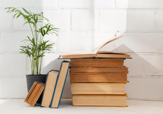 Arranjo de livros com planta