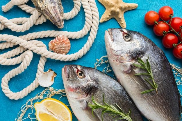 Arranjo de peixes com tomates acima da vista