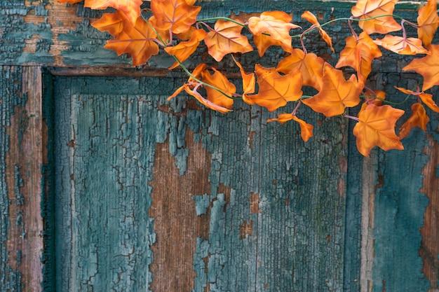 Arranjo de porta velha arranhada com folhas