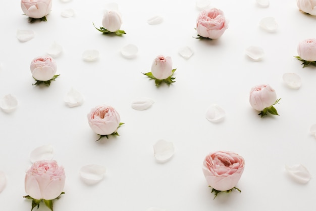 Arranjo de rosas e pétalas vista alta