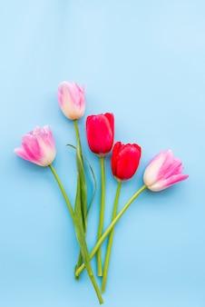 Arranjo de várias tulipas frescas