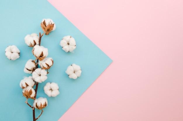 Arranjo de vista superior com pequenas flores de algodão