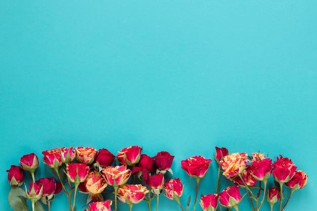 Arranjo de vista superior de flores de cravo com espaço de cópia