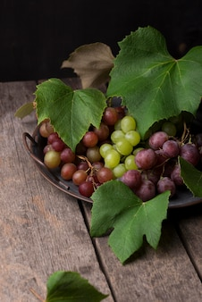 Arranjo frontal de frutas de outono