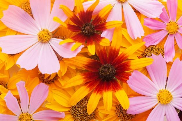 Arranjo lindo de papel de parede de flores