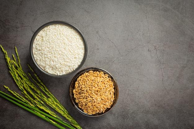 Arroz branco e arroz em casca em uma tigela pequena com planta de arroz no chão escuro