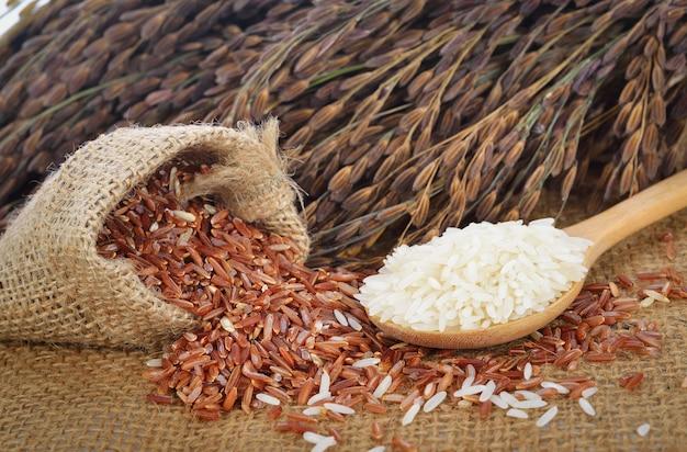 Arroz branco e arroz vermelho (arroz de jasmim tailandês) e arroz não moído