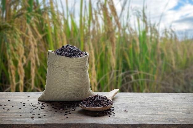 Arroz em saco e colher de madeira com o fundo do campo de arroz