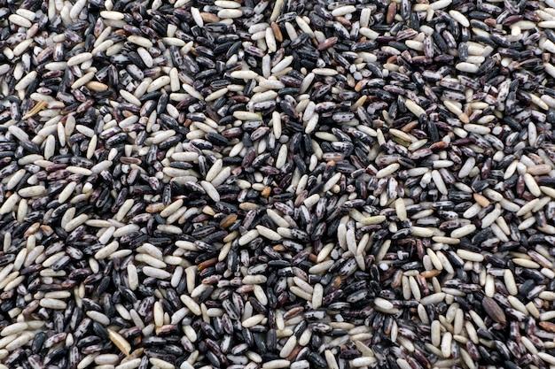 Arroz glutinoso preto (arroz pegajoso preto, arroz preto)