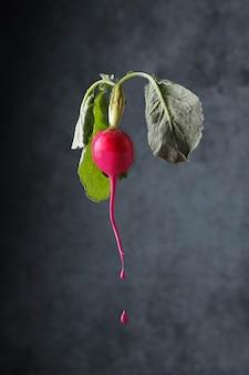 Arte culinária com rabanete e tinta Foto Premium