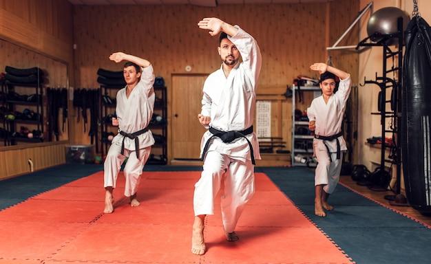 Artes marciais, treinamento de luta em ação