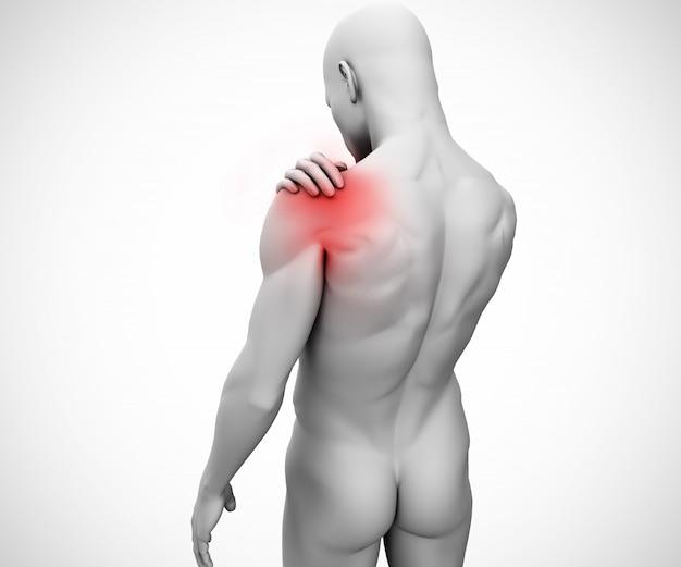 Articulação do ombro destacada da figura humana