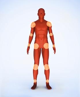 Articulações de um esqueleto digital vermelho