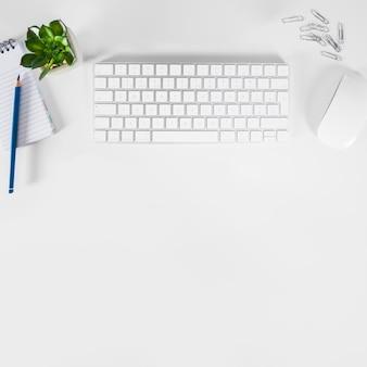 Artigos de papelaria e planta perto de teclado e mouse