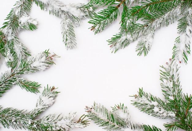 Árvore coberta de neve em um fundo branco