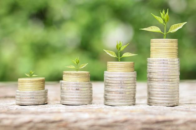 Árvore crescendo na pilha de moedas para economizar dinheiro com foco seletivo do conceito