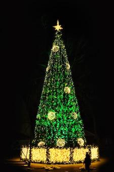 Árvore de natal verde à noite parque