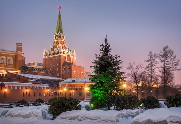 Árvore de peles no alexander garden e a torre da trindade do kremlin de moscou