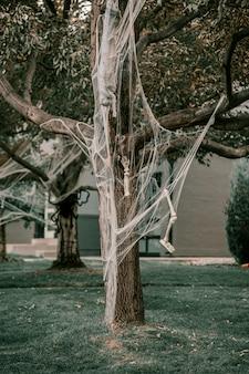 Árvore decorada com esqueleto e teia de aranha