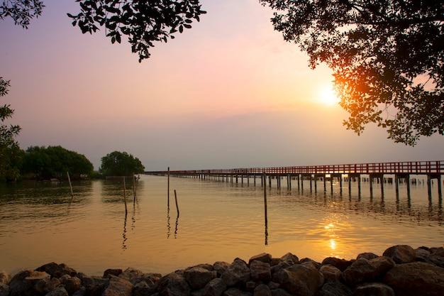 Árvore do céu luz solar longa ponte vermelha no mar da praia