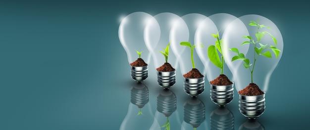 Árvore em crescimento de mudas com sequência de crescimento do solo em lâmpadas ecologia da natureza conceito de crescimento