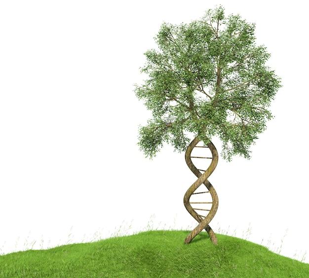 Árvore em forma de dna com troncos formando a dupla hélice