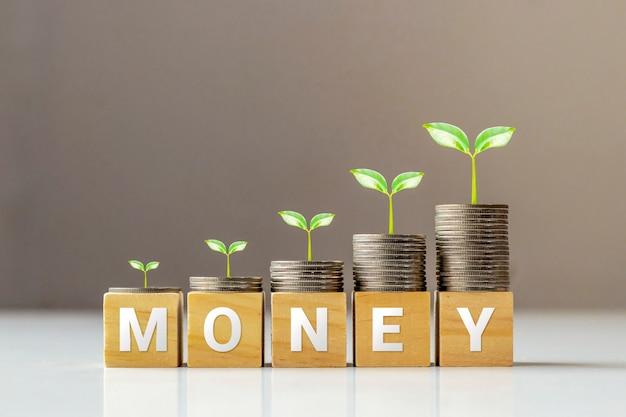 Árvore em moedas e cubos de madeira com ideias de dinheiro, finanças e negócios de palavras.