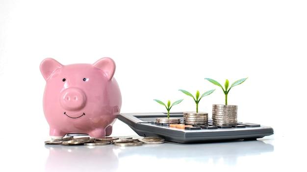 Árvore em uma pilha de dinheiro e uma calculadora com um cofrinho