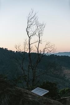 Árvore leafless com a célula solar com a montanha no fundo na vila de akha de maejantai no monte em chiangmai, tailândia.