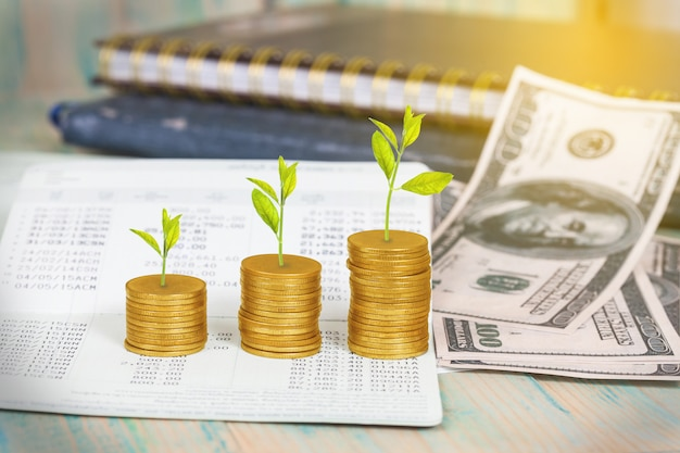 Árvore que cresce na pilha das moedas, conceito do crescimento do investimento.