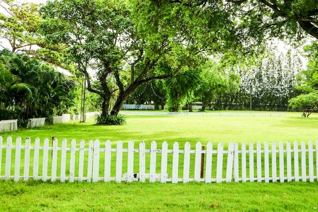 Árvore verde e grama verde na cerca de madeira do jardim