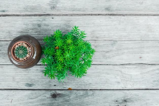 Árvore verde em um fundo de madeira, espaço vazio para mensagens