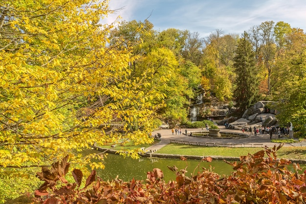 Árvores amarelas e fonte no outono, vista da paisagem do lago no parque sofievka.