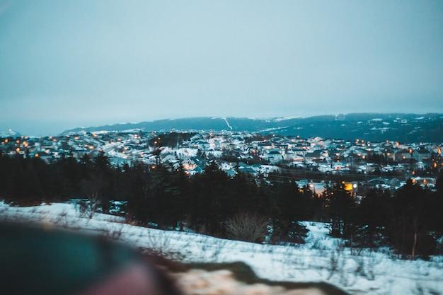 Árvores cobertas de neve e cidade durante a noite