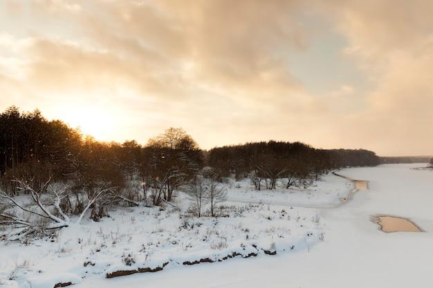 Árvores cobertas de neve e gelo e outras plantas no inverno