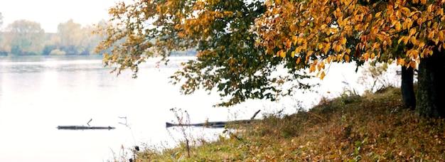 Árvores coloridas de outono perto do rio, vista de outono, panorama