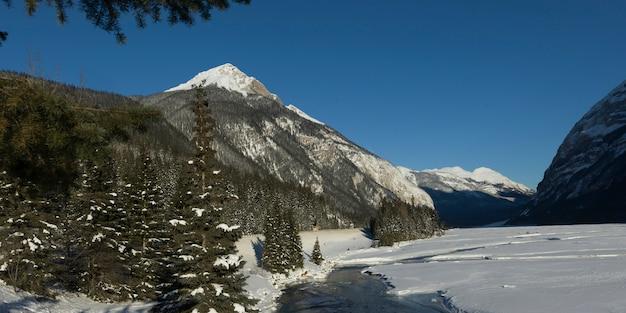 Árvores, com, montanhas, em, neve coberta, vale, esmeralda, lago, parque nacional yoho, columbia britânica, lata