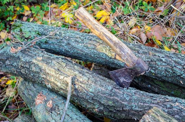 Árvores cortadas e um machado em um dos conveses
