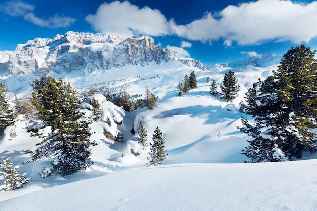 Árvores de inverno nas montanhas alpinas