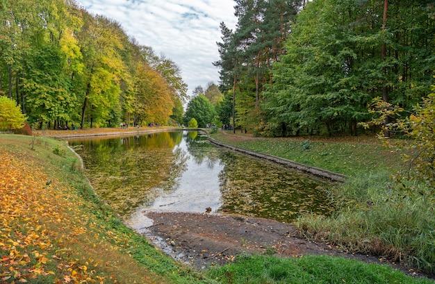 Árvores de outono com folhas amarelas, paisagem pitoresca do lago da floresta, ucrânia, parque sofyivsky em uman