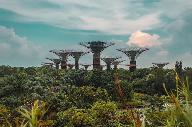 Árvores do jardim da baía da marina em cingapura