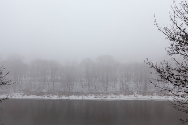 Árvores e clima frio de inverno após a queda de neve, montes de neve e árvores no inverno, montes de neve profunda e árvores após a última queda de neve