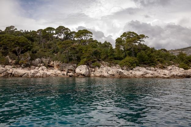 Árvores e natureza na costa da ilha de lokrum, dubrovnik, na croácia