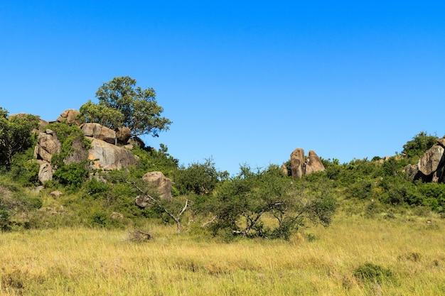 Árvores nas falésias e rochas em serengeti. tanzania, africa