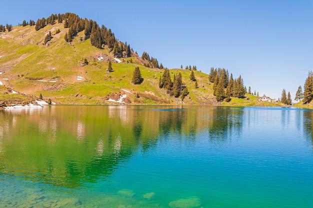 Árvores nas montanhas da suíça cercadas pelo lago lac lioson