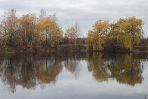 Árvores perto do lago no outono