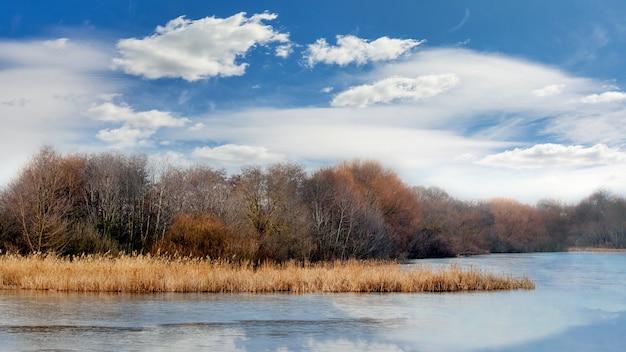 Árvores sem folhas sobre o rio no outono