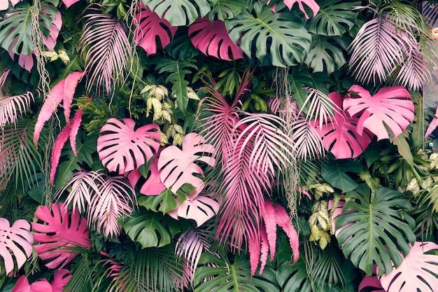 Árvores tropicais dispostos em plano total ou parede cheia existem folhas em tamanhos diferentes