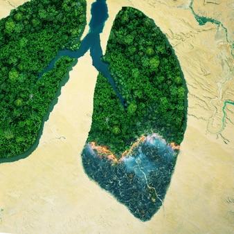 Árvores verdes da floresta estão queimando, vista superior. incêndio florestal, vista aérea. pulmões verdes do planeta terra. conceito de proteção da natureza e da floresta tropical, respiração natural e redução natural de co2.
