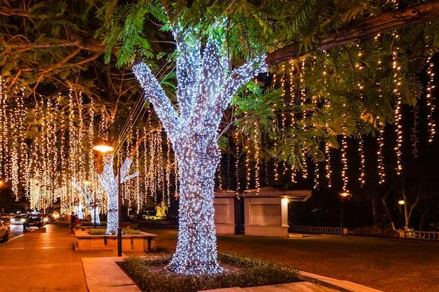 As árvores são decoradas com lâmpada, tiro normal e desfocado